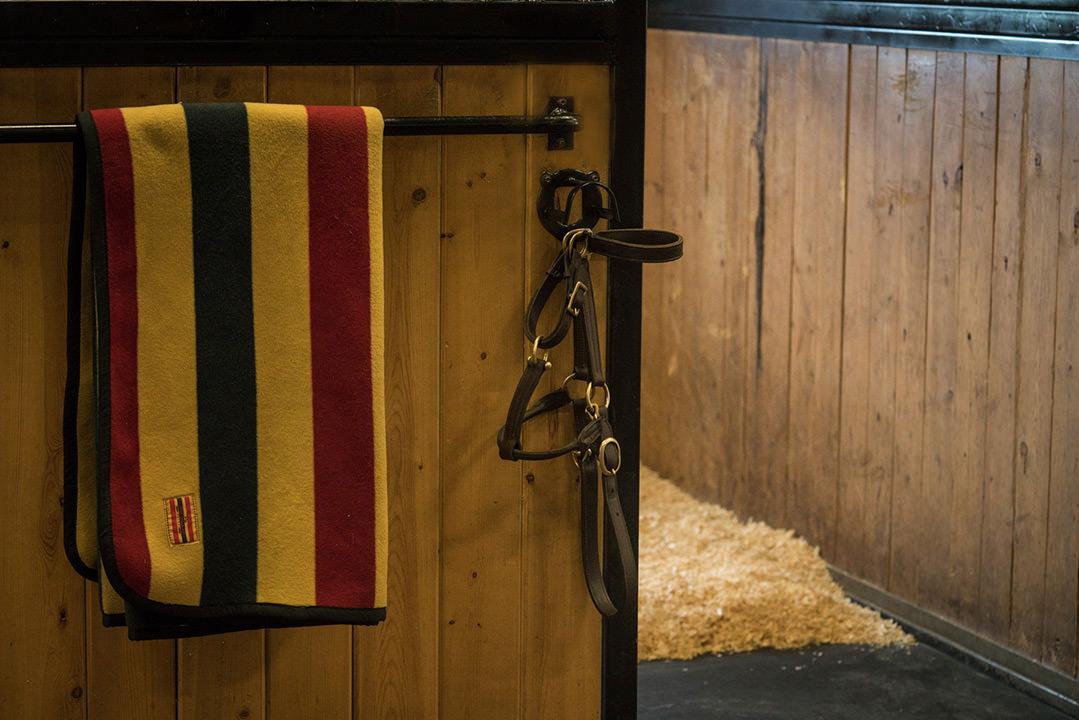 indoor-stall